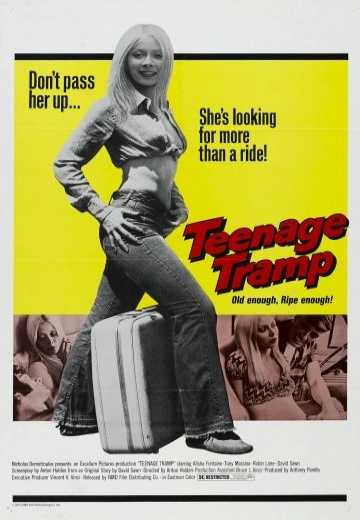 Подросток-бродяга / Teenage Tramp (1973)